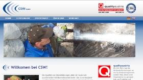 Webseiten_13